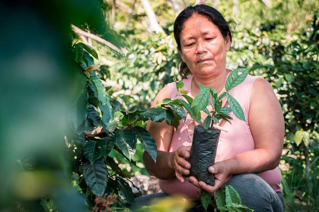 """CO2-neutral mit Nespresso unterstützt: Projekt """"Jubilación Segura"""" von PUR Projet in Peru."""